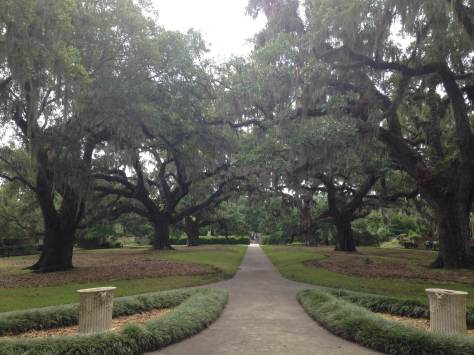 brookgreen oaks
