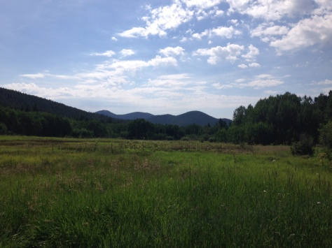 Frazier Meadow.